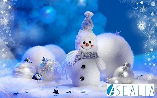 Feliz Navidad ASEALIA